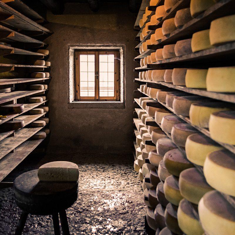 cheeseforum